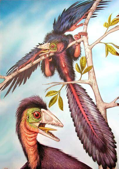 """Facts About Archaeopteryx, the Famous """"Dino-Bird"""""""