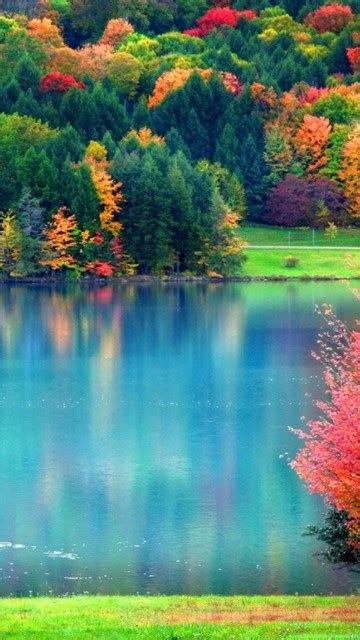 Pretty Fall Wallpapers As Well As Fall Hd Wallpapers Hd