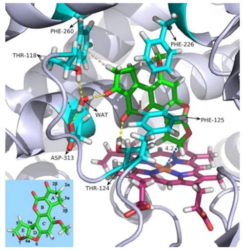 Toxins | Free Full-Text | Multiple CH/π Interactions