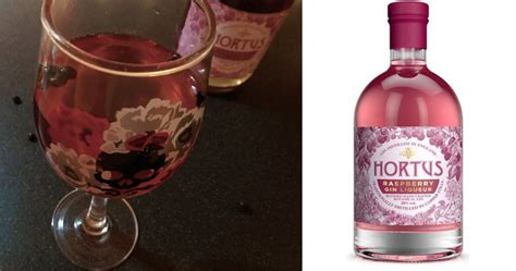 Raspberry gin cocktail, with Hortus Raspberry Liqueur